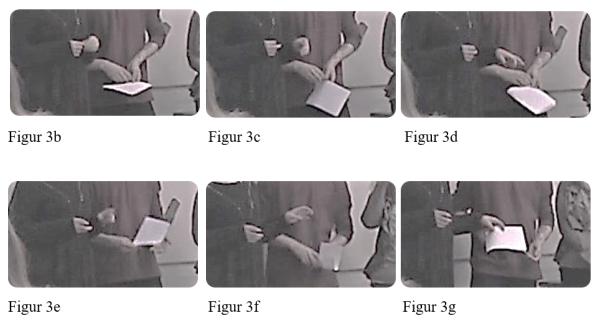 figur-3b-3g-henricson